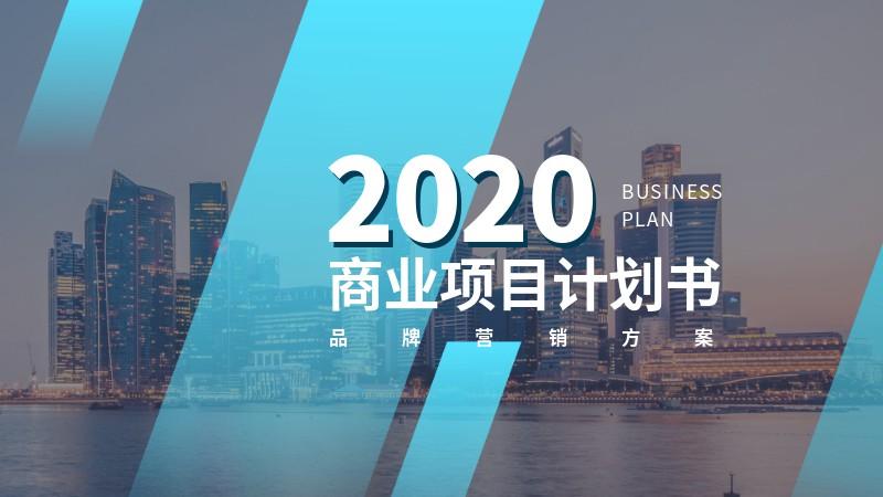 科技蓝商业计划书