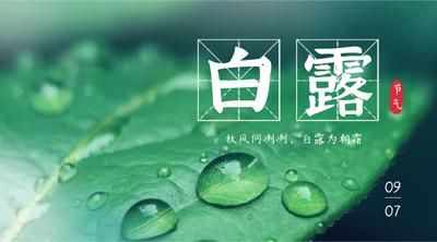 白露二十四节气叶子实景手机横幅广告