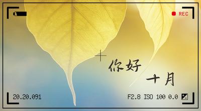 十月你好黄色相机边框小清新手机横幅广告