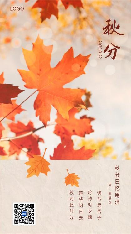 秋分唯美风景枫叶海报