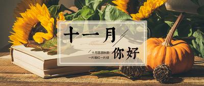 十一月你好写实照片秋日暖阳向日葵