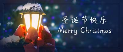 圣诞节快乐路灯实景氛围
