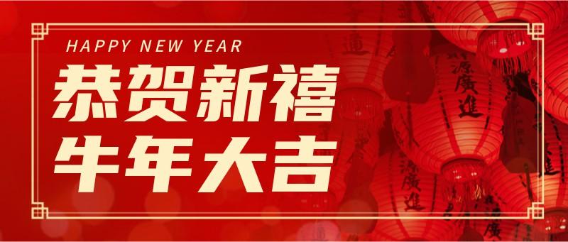恭贺新禧,新年,灯笼,实景