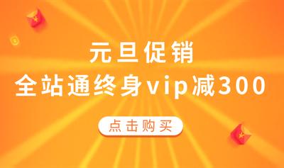 元旦VIP促销活动图2
