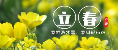 立春,二十四节气,花,风景