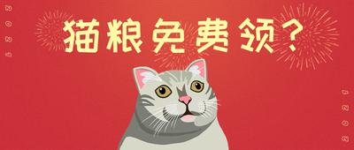 猫粮,福利,宠物