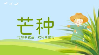 芒种,节气 绿色,节气稻穗