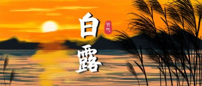 白露节气 风景 秋天 日落