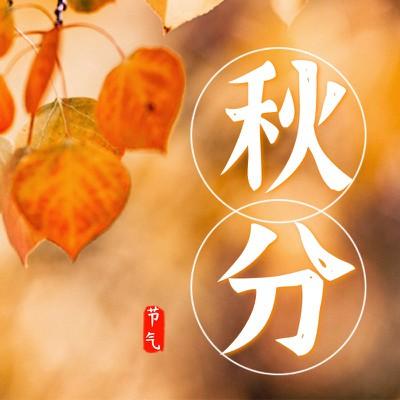 秋分节气,文艺,实景
