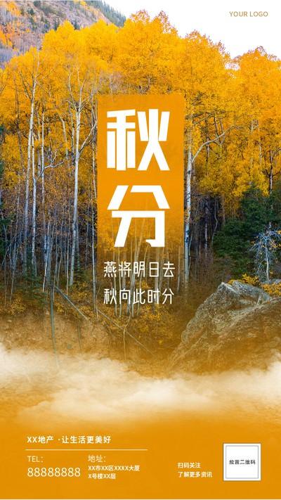 秋分,树林,氛围,实景