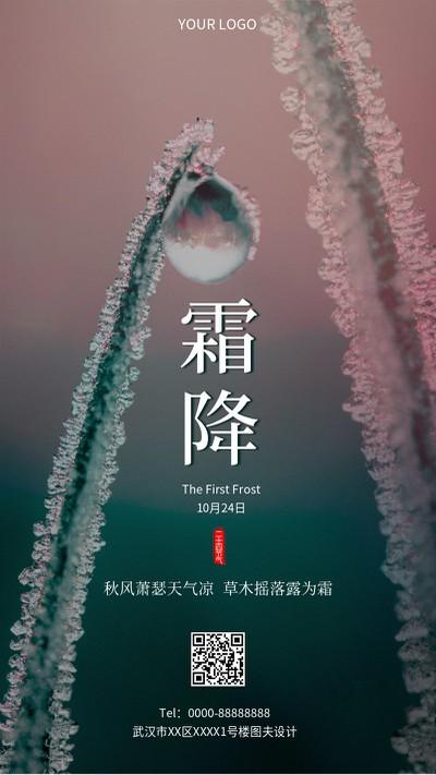 霜降 实景 节气 手机海报