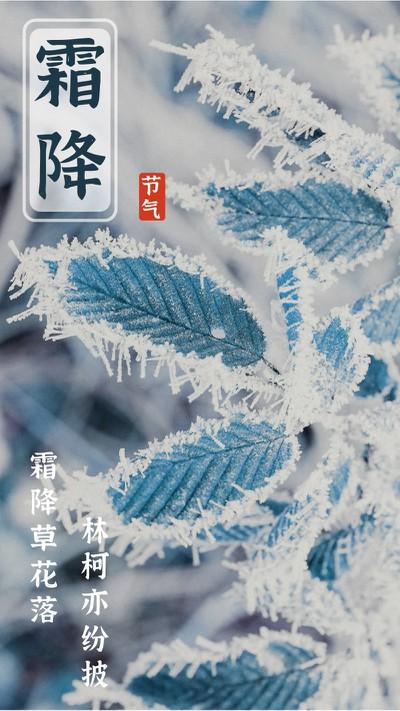霜降,叶子,海报